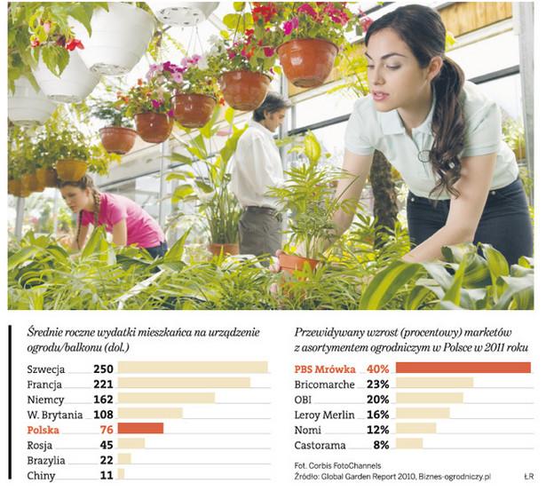 Ile Polacy wydają na urządzenie ogrodu