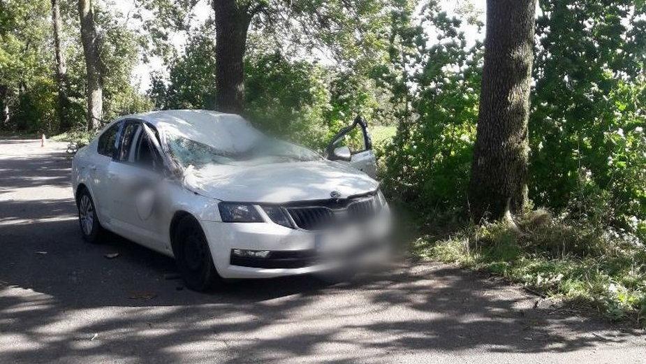 Tragedia pod Bisztynkiem. Na jadący samochód spadło drzewo, nie żyje 59-letni kierowca [ZDJĘCIA]