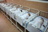 porodiliste bebe01_RAS_foto Zoran Ilic