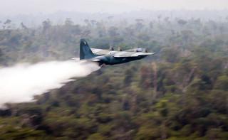 Prezydent Brazylii wysyła wojsko do Amazonii. Będzie walczyć z pożarami i nielegalną wycinką