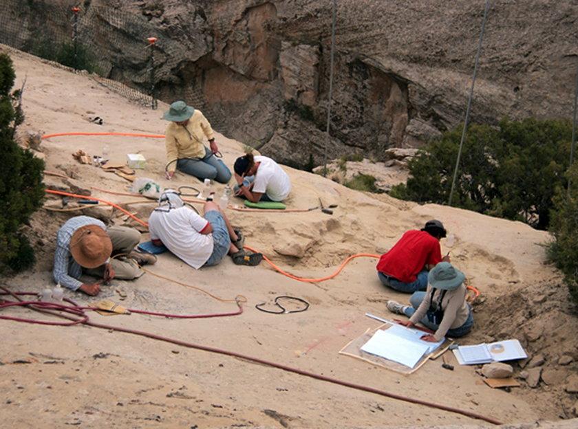 Paleontolodzy odkopują pterozaura