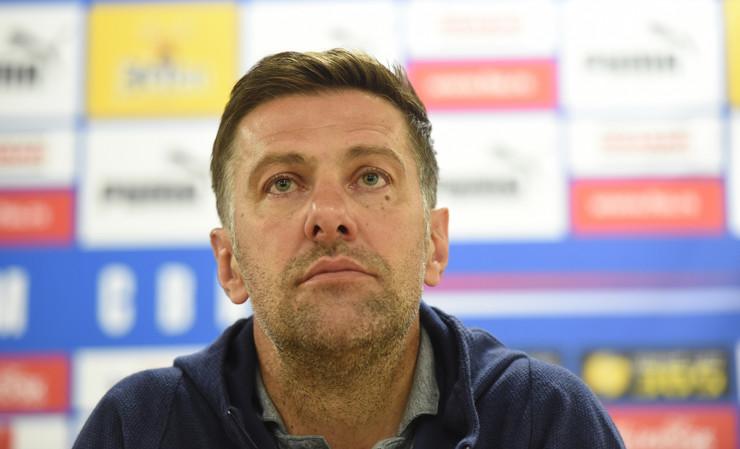 Mladen Krstajić, Fudballska reprezentacija Srbije