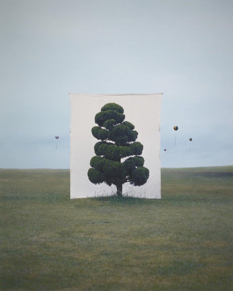 "Myoung Ho Lee, ""Tree #2"" (2006)"