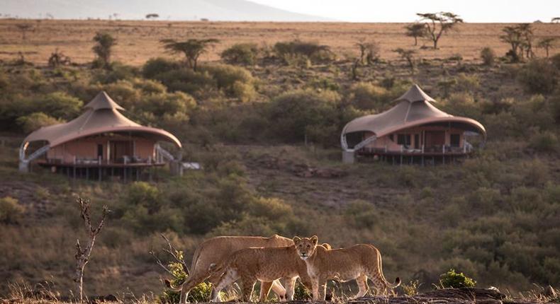 Mahali Mzuri safari camp. (courtesy)