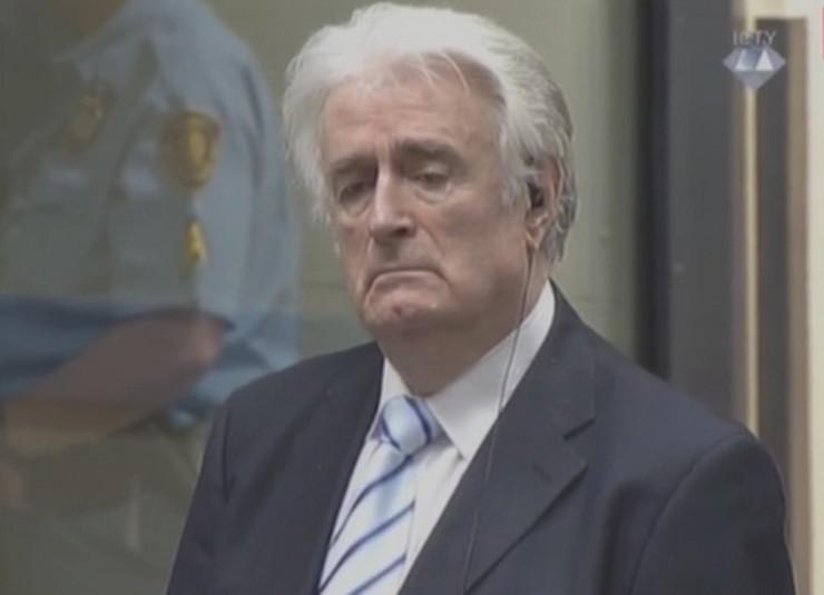 Radovan Karadžić presuda reakcija