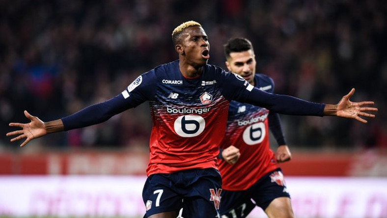 Real Madrid are planning to get Victor Osimhen in the summer (Twitter/Lille)