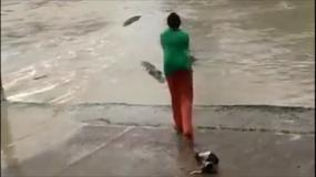 Kobieta przegoniła krokodyla... klapkiem