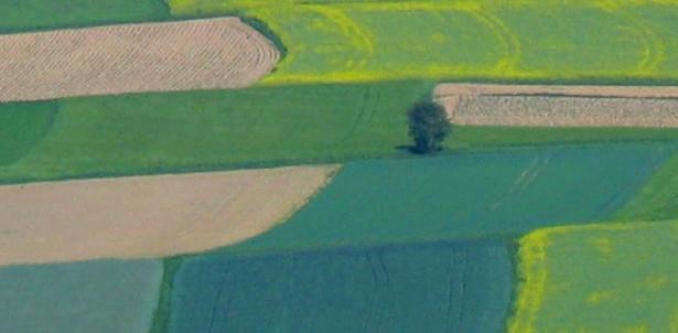 Cudzoziemcom coraz trudniej kupić ziemię