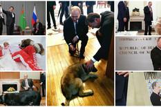 Vladimir Putin, Psi, Ljubimci