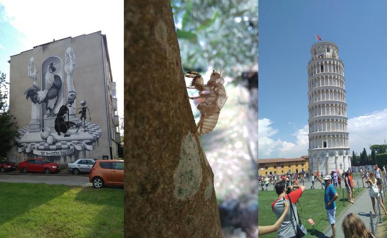 Zdjęcia wykonane telefonem Coolpad Torino