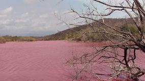Woda w jednej z meksykańskich lagun przybrała krwistoczerwoną barwę