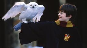 """""""Harry Potter"""": akcesoria dla każdego fana serii"""