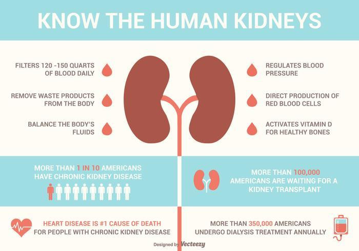 World Kidney Day 2019: 5 tips on how to keep you kidneys