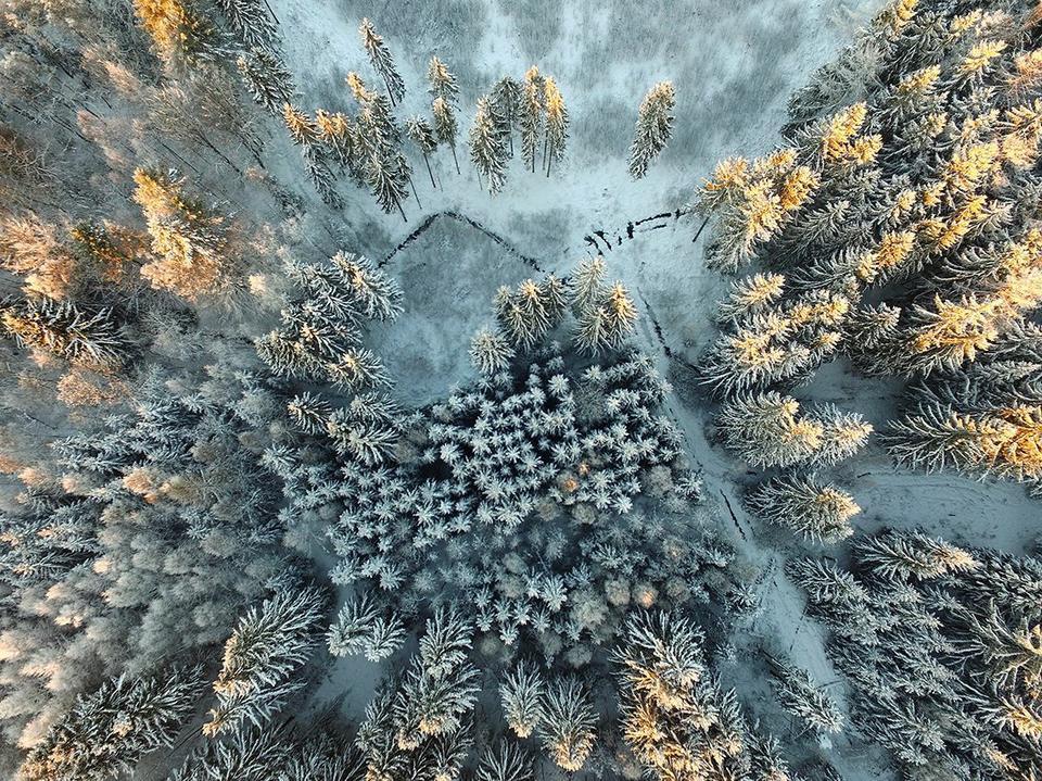 """Wyróżnienie: """"Ostatnie promienie słońca"""", fot. Eberhard Ehmke"""