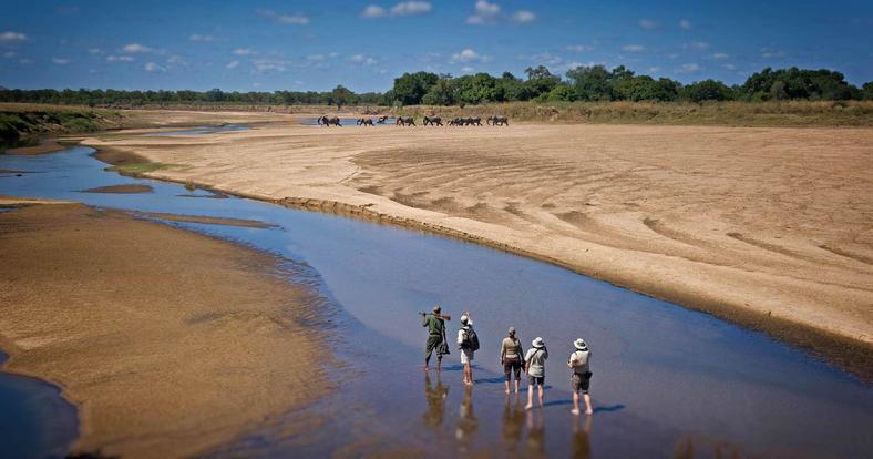 Zambia's world-renowned Luangwa Valley