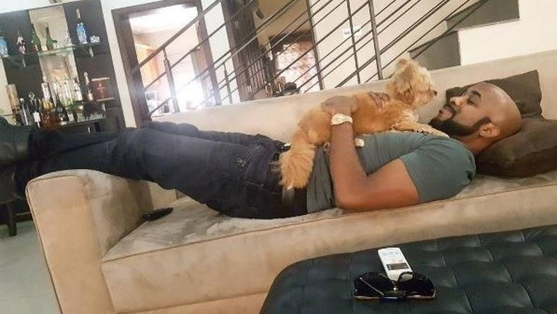 Banky W & dog, the Duke of Wellington