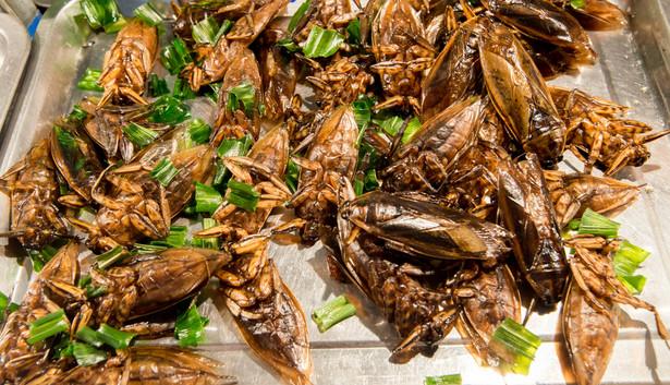 Moda na jedzenie owadów przyjdzie i do Polski. Tak jak stało się to z owocami morza. Jeszcze kilkanaście lat temu wielu z nas nie spróbowałoby ośmiornicy, a dziś w restauracjach za owoce morza trzeba słono płacić