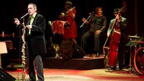 Hugh Laurie w Szczecinie. Pula biletów wyprzedana w kilka godzin