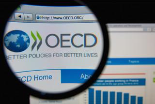 OECD: Podatek tam, gdzie dochód