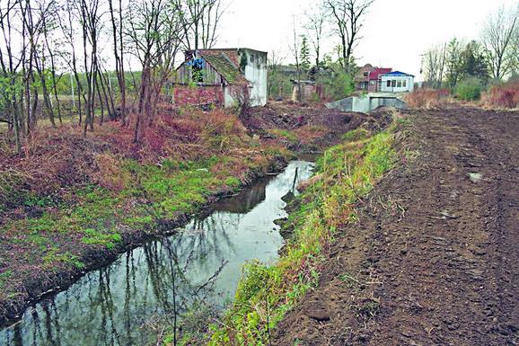 Nera je jedina planinska reka u Vojvodini, stiže sa rumunske planine Semenik koja je deo Karpata