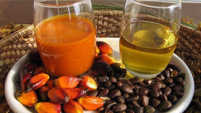 5 amazing benefits of palm kernel oil for hair