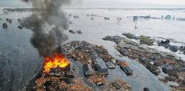 Fukushima. Życie po katastrofie