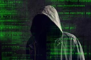 Polskie firmy coraz bardziej narażone na cyberataki. Przestępcy gotowi zaatakować nawet za 50 dolarów