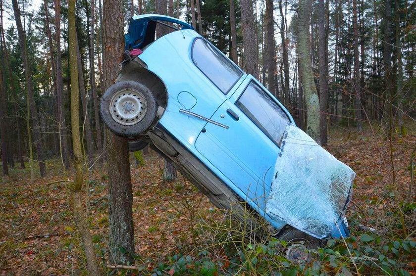 Lubelskie: Fiat zawisł na drzewie w Hutkach. Za kierownicą 86-latka