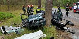 Śmierć na Helu. BMW roztrzaskało się na drzewie