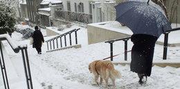 Zima zaatakuje już niedługo? IMGW publikuje długoterminową prognozę pogody