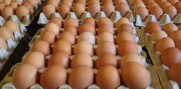 Uwaga! Skażone jajka
