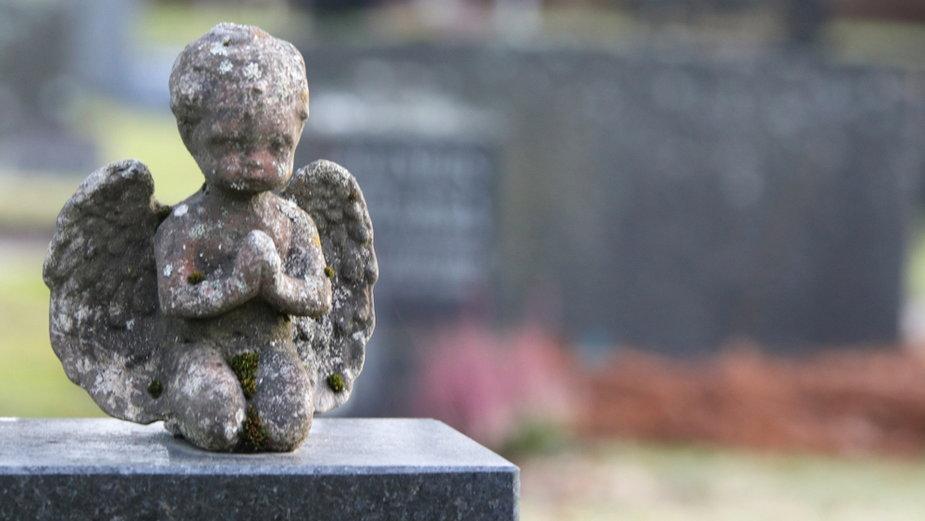 Joaquín Cámara: gdzie wędrują dzieci po śmierci?