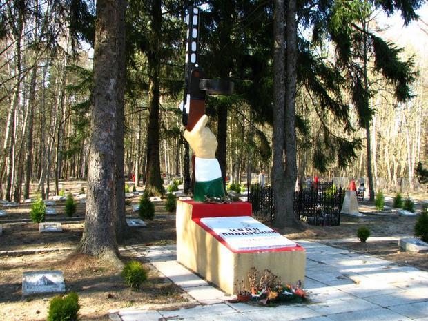 """Borne Sulinowo, cmentarz cywilno-wojskowy, tzw. """"z pepeszą"""""""