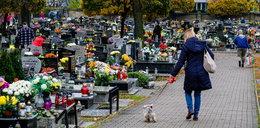 Polacy ruszyli na cmentarze. Wreszcie mogliśmy zapalić znicz bliskim