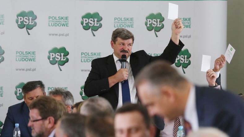 Kulisy Rady Naczelnej PSL: Kalinowski przeciw Piechocińskiemu
