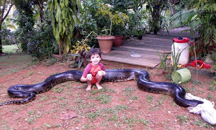 Trzymał gigantycznego węża w wannie