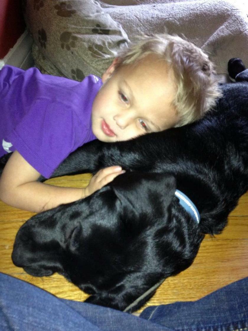 Pies uratował śpiącego chłopca