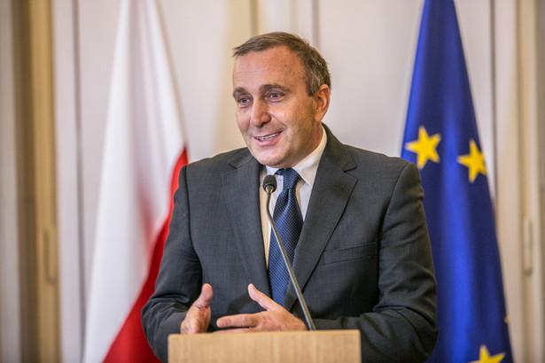 Grzegorz Schetyna, fot. MSZ