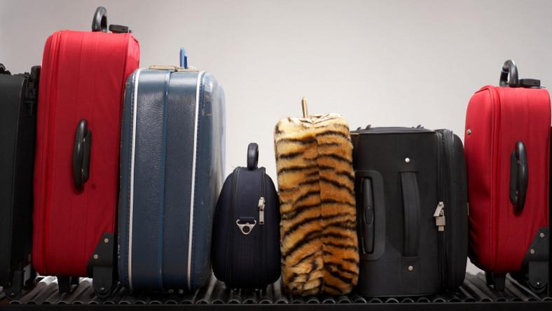 46b74d62a210b Wymiary bagażu podręcznego i rejestrowanego oraz opłaty za nadbagaż ...