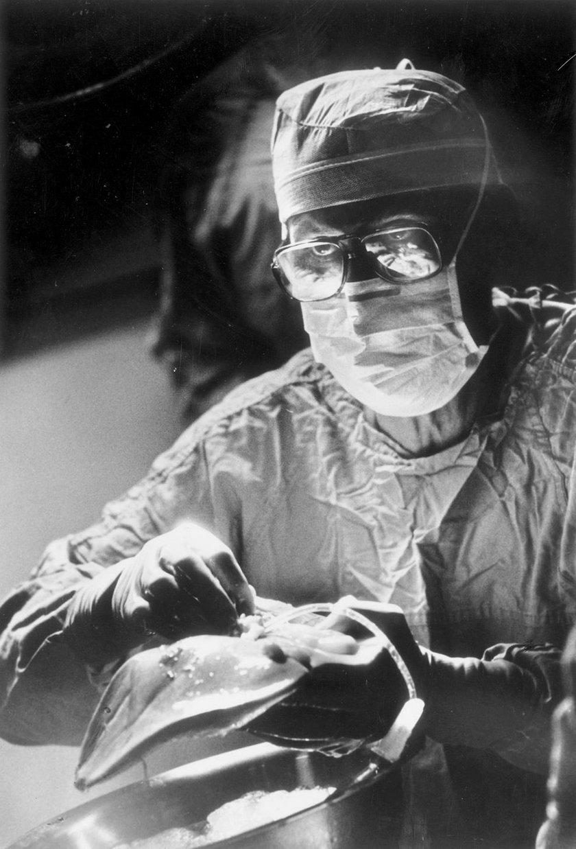 Przed 50 laty, 23 lipca 1967 r. w szpitalu uniwersyteckim w Denver w USA. prof. Thomas Starzl przeprowadził pierwsze udane przeszczepienie wątroby. Na zdjęciu – z 13 maja 1985 r. – przygotowuje wątrobę do transplantacji.