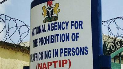 NAPTIP rescues 17,000 human trafficking victims