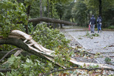 nevreme oluja nemačka 4 EPA OMER MESSINGER