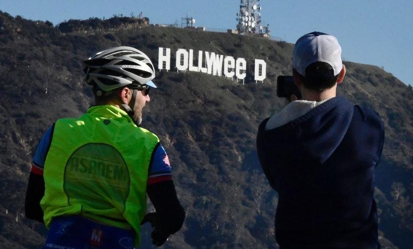 """Żartownisie zmienili napis """"Hollywood"""" w Hollyweed"""""""