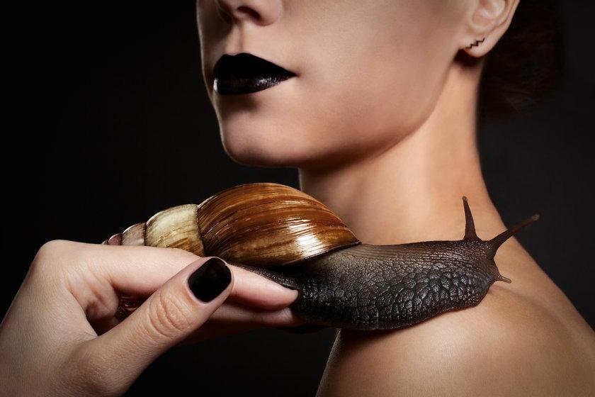 odnowa śluzem ślimaka