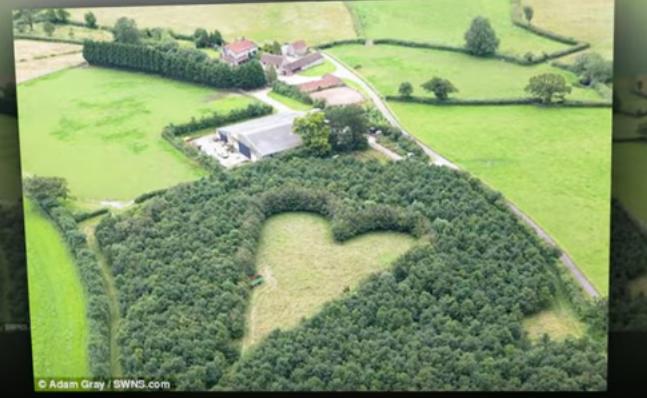 Polana w kształcie serca
