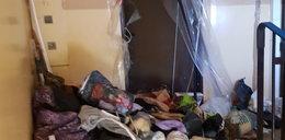 10 lat gromadziła śmieci. Posprzątali jej dom