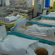 bebe u subotickom porodilistu_010117_RAS_foto Biljana Vuckovic 001