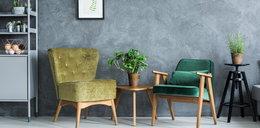 Wyjątkowe siedziska, które wzbogacą wnętrze twojego mieszkania