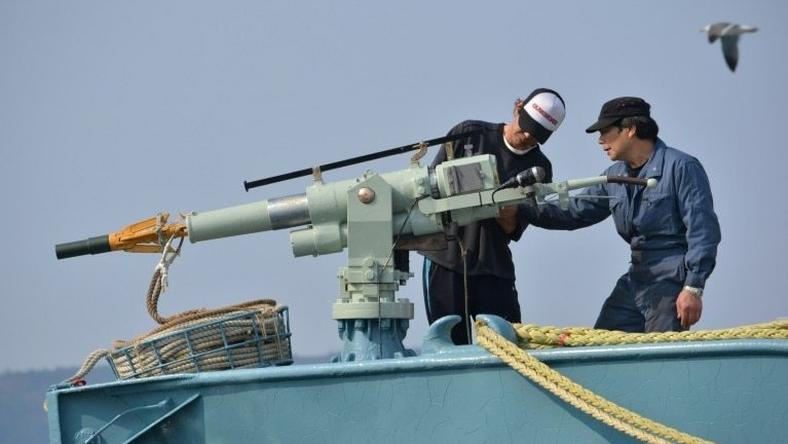 In this file photo taken on April 25, 2014 crew members of a whaling ship check a whaling gun or harpoon before departure at Ayukawa port in Ishinomaki City