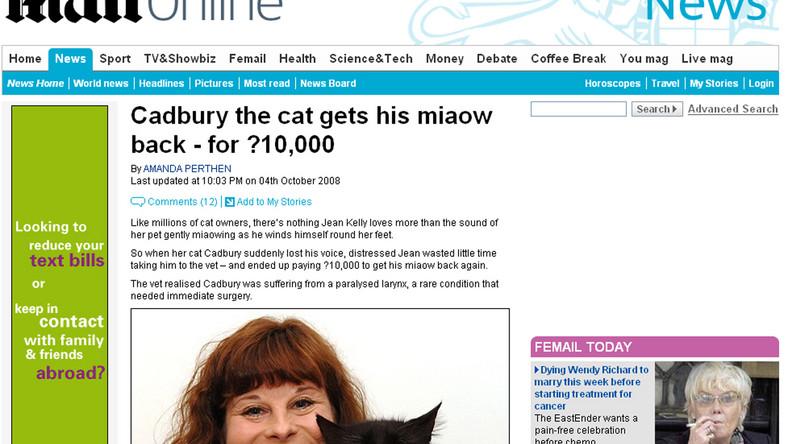 Wydała tysiące funtów na miauczącego kota